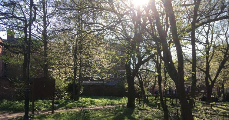 Prebend Gardens (Leicester Mercury) IMG_1116